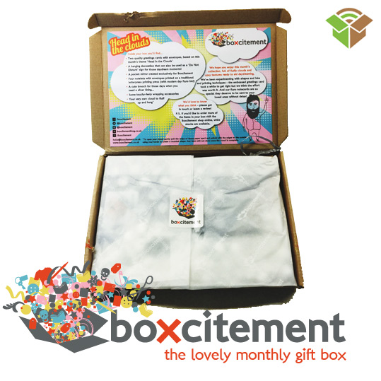 Boxcitement Surprise Box