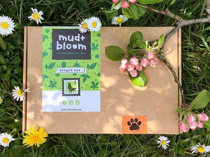Try and Mud and Bloom via uOpen